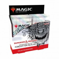 Adventures in the forgotten realms - Collector Box